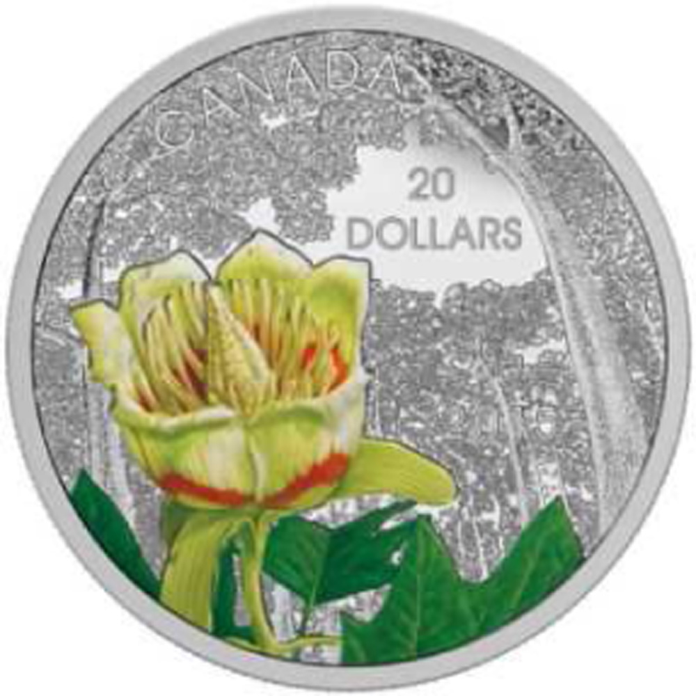Lieferumfang:Kanada : 20 Dollar Kanadische Wälder - Karolingischer Tulpenbaum - farbig  2015 PP