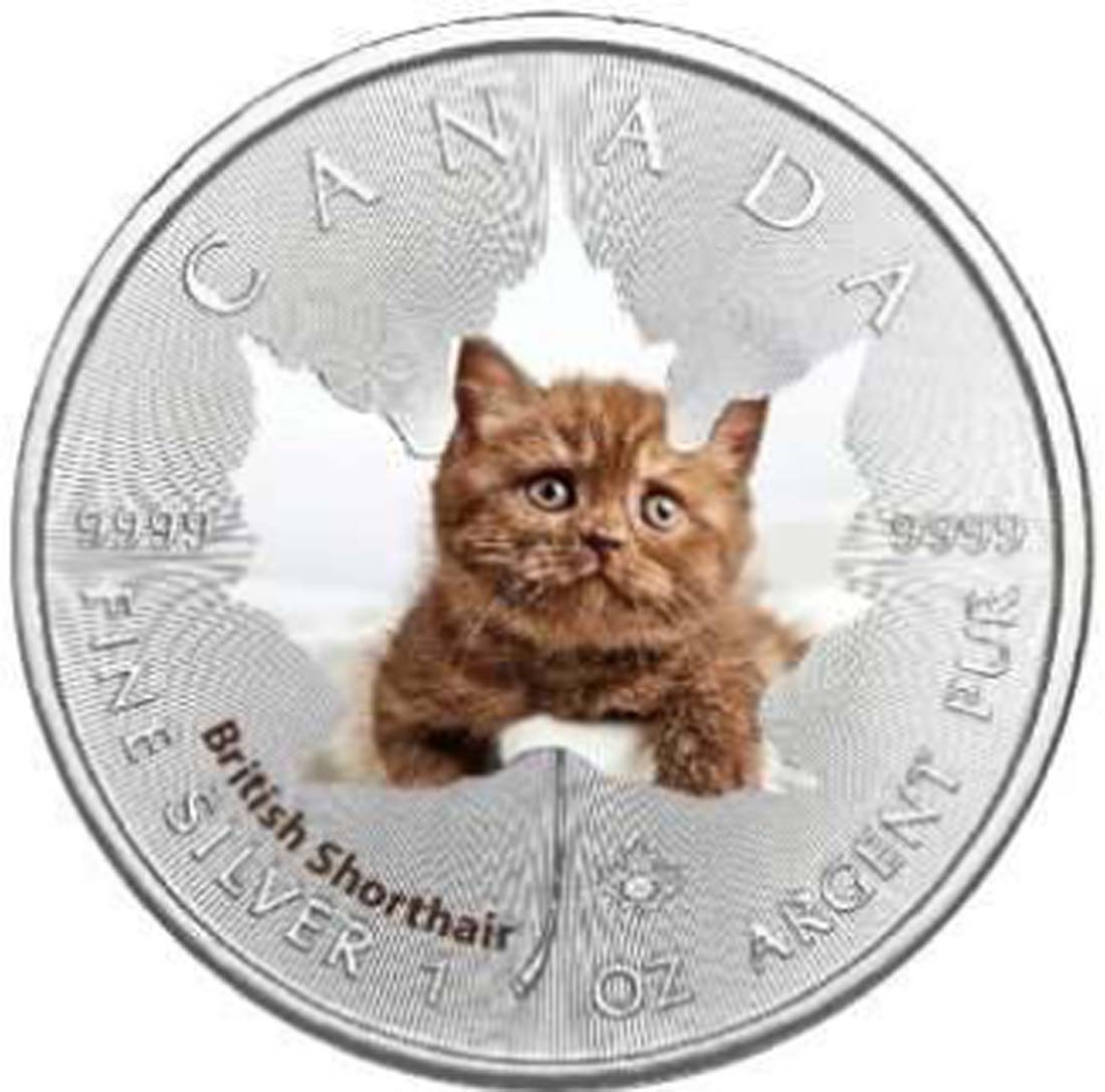 Kanada : 5 Dollar Maple Leaf - Katzenbabies - Heilige Birma  2017 Stgl.