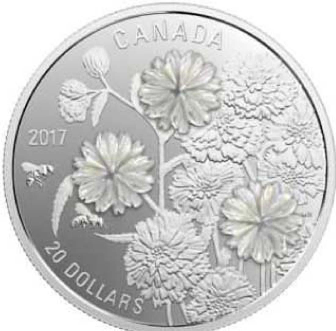 Kanada : 20 Dollar Sumpfschafgarbe - Pearl Flower - mit Perlmuttauflage  2017 PP