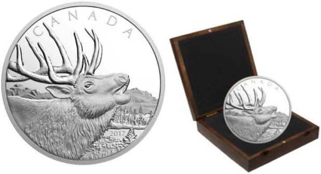 Lieferumfang:Kanada : 125 Dollar Kanadischer Rothirsch  2017 PP