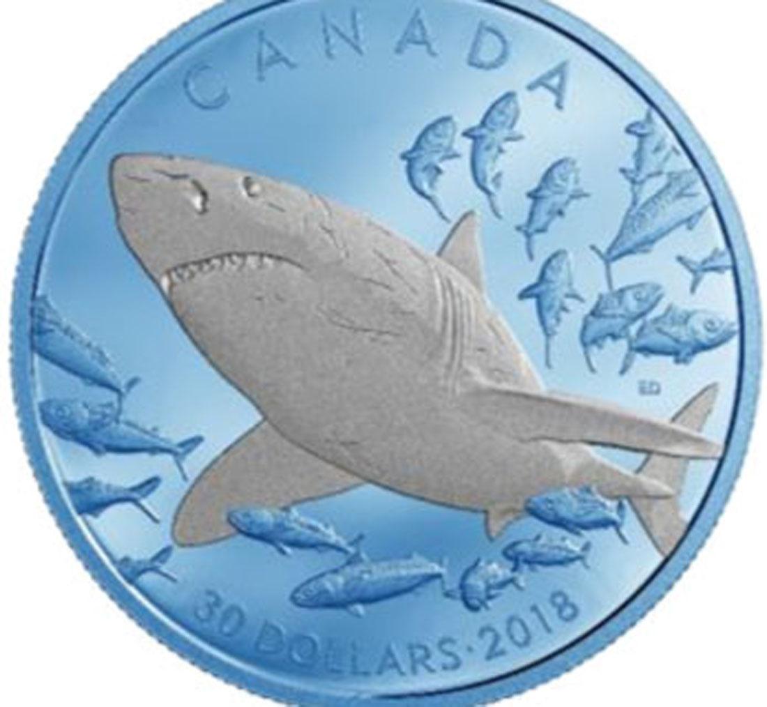 Übersicht:Kanada : 30 Dollar Der Große Weiße Hai - blaue Rhodiumauflage 2 oz  2018 PP
