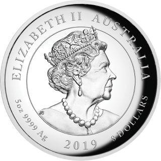 Rückseite:Australien : 8 Dollar 50 Jahre Mondlandung   5 oz  2019 PP