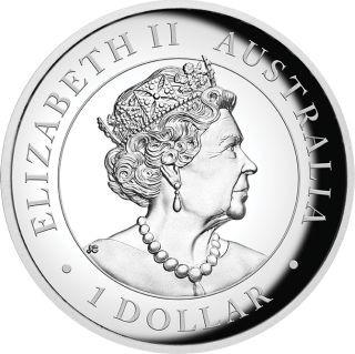 Rückseite:Australien : 1 Dollar Keilschwanzadler  1 oz  Highrelief  2019 PP