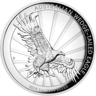 Vorderseite:Australien : 1 Dollar Keilschwanzadler  1 oz  Highrelief  2019 PP