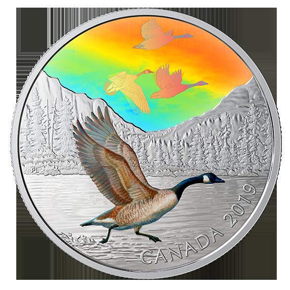 Lieferumfang:Kanada : 30 Dollar Canadagänse - Vögel in Bewegung #1  2019 PP