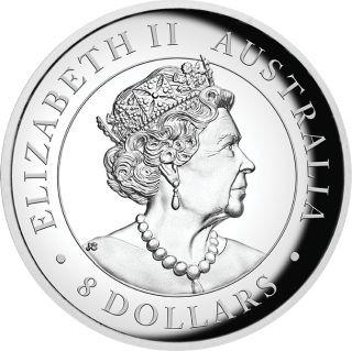 Rückseite:Australien : 8 Dollar Keilschwanzadler - Highrelief 5 oz  2019 PP