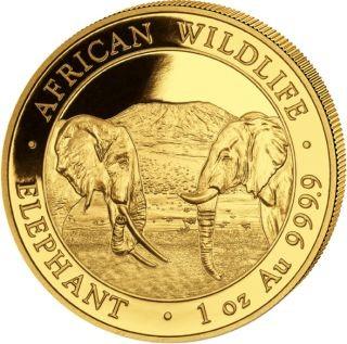 Lieferumfang:Somalia : 1000 Schilling Elefant - 1 oz  2020 Stgl.