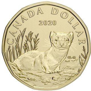 """Vorderseite:Kanada : 3,90 Dollar Specimensatz """"Schwarzfußiltis""""  2020 Stgl."""