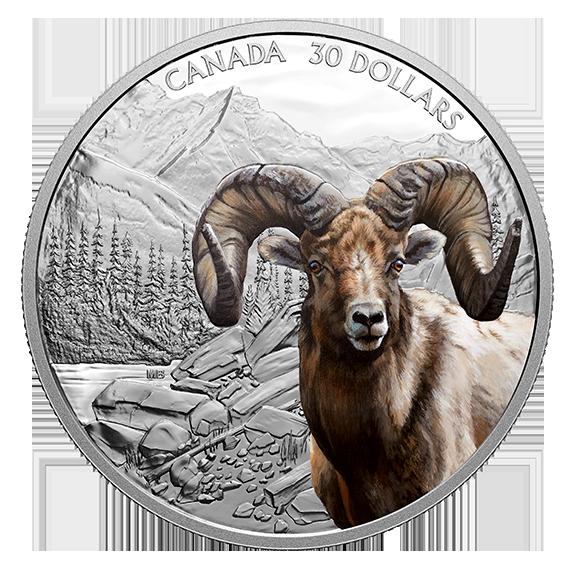 Vorderseite:Kanada : 30 Dollar Dickhornschaf - Imposante Ikonen #1 im Einzeletui  2020 PP