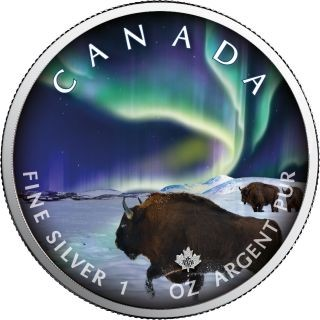 """Lieferumfang:Kanada : 5 Dollar Maple Leaf - Nordlichter """"Buffalo"""" #5  2020 Stgl."""