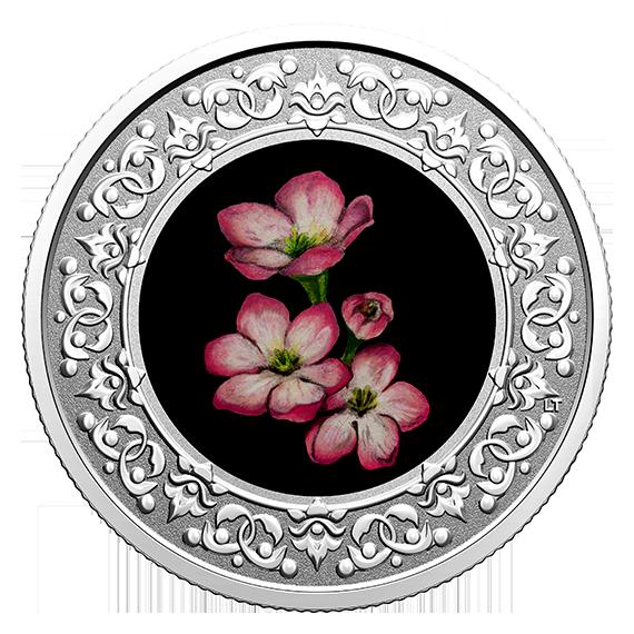 Vorderseite:Kanada : 3 Dollar Maiblume/Nova Scotia - Florale Wahrzeichen #3  2020 PP