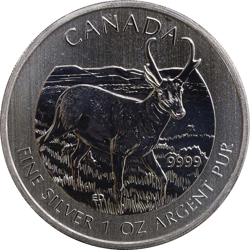 Kanada : 5 Dollar Wildlife Serie Antilope  2013 Stgl.