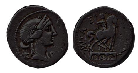 Lepidus-schwarz.jpg