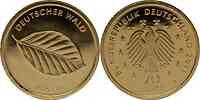Deutschland : 20 Euro Buche 2011 Stgl.