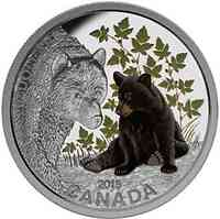 Kanada : 20 Dollar Tierbabies - Schwarzbär - farbig  2015 PP