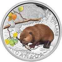 Kanada : 20 Dollar Tierbabies - Biber - farbig  2014 PP