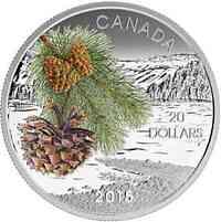 Kanada : 20 Dollar Kanadische Wälder - Küstenkiefer - farbig  2015 PP