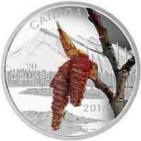 Kanada : 20 Dollar Kanadische Wälder - Balsampappel -  2015 PP