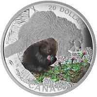 Kanada : 20 Dollar Tierbabies - Stachelschwein  2016 PP