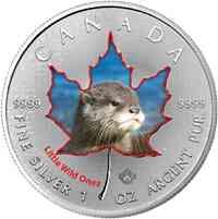 Kanada : 5 Dollar Tierbabies - Fischotter  2016 Stgl.
