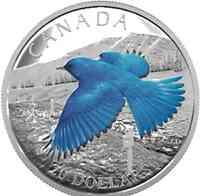 Kanada : 20 Dollar Zugvögel - Berghüttensänger  2016 PP