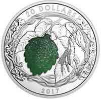Kanada : 20 Dollar Glänzende Birkenblätter mit Quarz-Druse  2017 PP