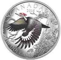 Kanada : 20 Dollar Zugvögel - Helmspecht  2016 PP