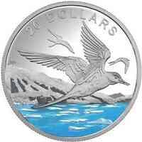 Kanada : 20 Dollar Küstenseeschwalbe mit Diamantglitter  2017 PP