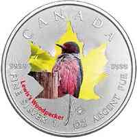 Kanada : 5 Dollar Maple Leaf - Vögel - Lewis Woodpecker  2017 Stgl.