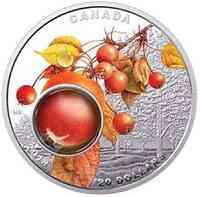 Kanada : 20 Dollar Morgentau - Zauber der Natur  2017 PP