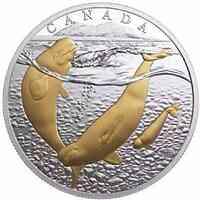 Kanada : 20 Dollar Von Meer zu Meer – Beluga Wal  2017 PP