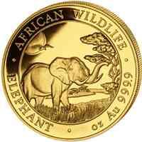 Somalia : 100 Schilling Elefant  2019 Stgl.