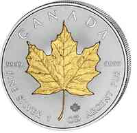 Kanada : 5 Dollar Maple Leaf 1 oz - teilvergoldet  2019 Stgl.