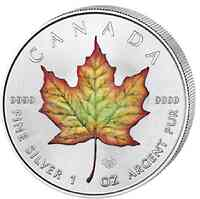 Kanada : 5 Dollar Maple Leaf 1 oz - farbig  2019 Stgl.