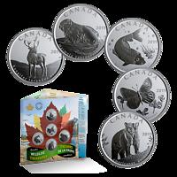 Kanada : 2,5 Dollar Schätze der kan. Tierwelt - 5x50 Ct Set im Blister 2019 Stgl.