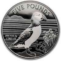 Alderney : 5 Pfund Papageientaucher 1 oz 2019 Stgl.