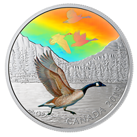 Kanada : 30 Dollar Canadagänse - Vögel in Bewegung #1  2019 bfr