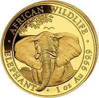 Somalia : 1000 Schilling Elefant - 1 oz 2021 Stgl.