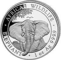 Somalia : 100 Schilling Elefant  2021 Stgl.