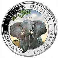 Somalia : 100 Schilling Elefant farbig  2021 Stgl.