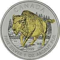 Kanada : 5 Dollar Wildlife Serie - Bison -, vergoldet  2013 Stgl.