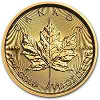 Kanada : 5 Dollar Maple Leaf 1/10 oz 2020 Stgl.
