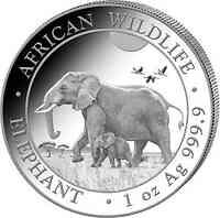 Somalia : 100 Schilling Elefant  2022 Stgl.