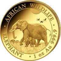 Somalia : 1000 Schilling Elefant  2022 Stgl.