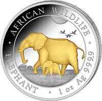 Somalia : 100 Schilling Elefant vergoldet  2022 Stgl.