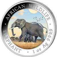 Somalia : 100 Schilling Elefant farbig  2022 Stgl.
