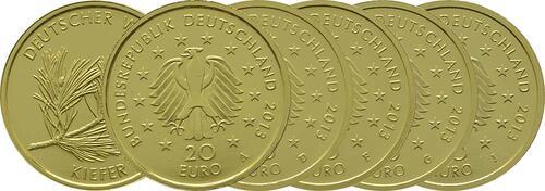 Lieferumfang:Deutschland : 20 Euro Kiefer Komplettsatz 5 Münzen ADFGJ  2013 Stgl.