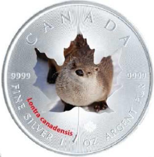 Lieferumfang:Kanada : 5 Dollar Maple Leaf - Fischotter  2015 Stgl.