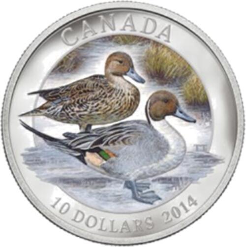 Lieferumfang:Kanada : 10 Dollar Spießenten - farbig  2014 PP