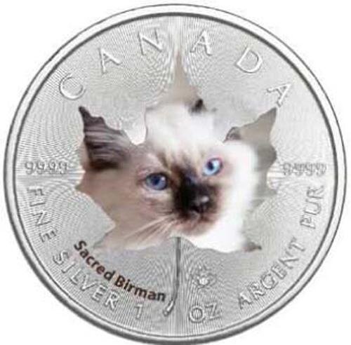 Lieferumfang :Kanada : 5 Dollar Maple Leaf - Katzenbabies - European Shorthair  2017 Stgl.